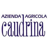 Caudrina
